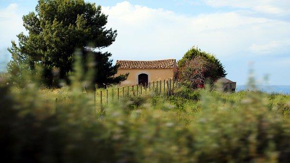 Baeume Bauernhaus
