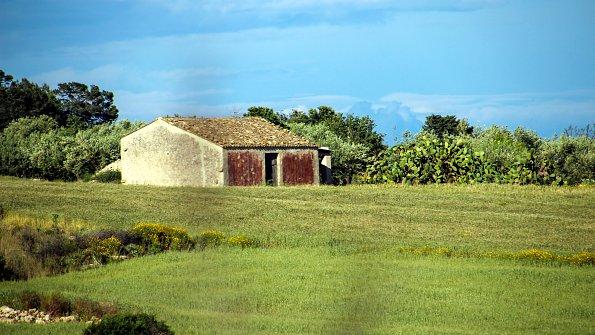 Bauernhaus Wiese