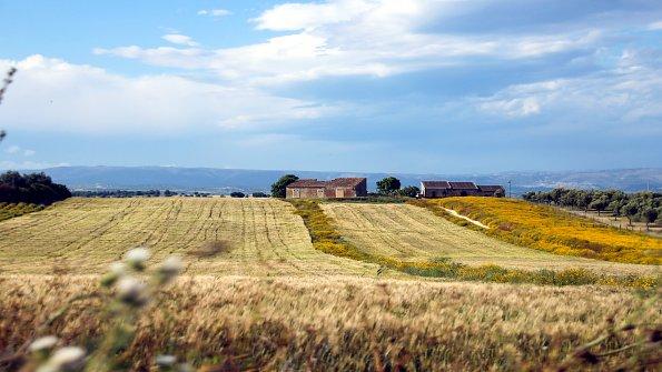 Weide Landschaft