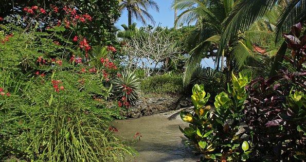 Paradies Lagune